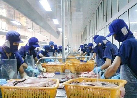 SEAFOOD EXPORT IN 2019: TAKE ADVANTAGE OF BREAKTHROUGH OPPORTUNITIES