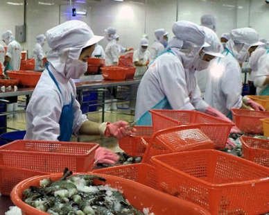 SHRIMP EXPORTS TO SOUTH KOREA EXPECTED TO RISE 30% IN 2019